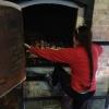 wood-kiln-011