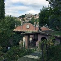 Capena-garden18